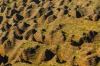 An aerial view of the Bungle Bungle Range, a UNESCO World Heritage Site in Purnululu National Park, located in the ...