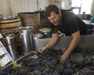 Donkey & Goat winery in Berkeley, California, strives to make wine as naturally as possible.