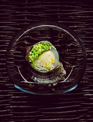 Maaemo: Norwegian oysters with mussels and dill.