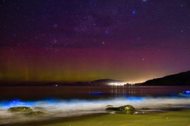 When I went to Hobart last year, I hoped to catch a glimpse of the elusive aurora australis. I had already seen the ...