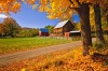 A New England farm surrounded by Autumn maples, US.