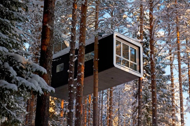The Cabin offers a rooftop deck among the trees.