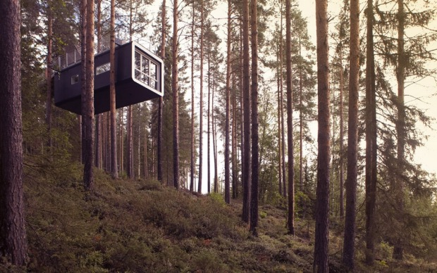 The Cabin sits high in the trees.