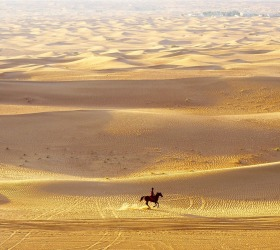 While enjoying an early morning balloon ride over the Dubai Desert we were amazed to see a lone horseman riding out ...