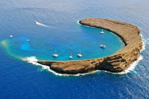 Image result for molokini hawaii