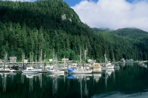 Elfin Cove Village, Small fishing town, Chichagof Island, Southeast Alaska.