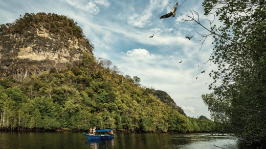 Experience a nature immersion in Langkawi.