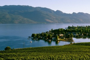 Many wineries overlook Lake Okanagan.