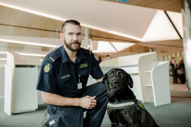 Scott from the Australian Border Force, and Labrador Namba.