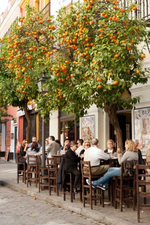 El Patio cafe in Seville on Calle Mateos Gago near Seville Cathedral.