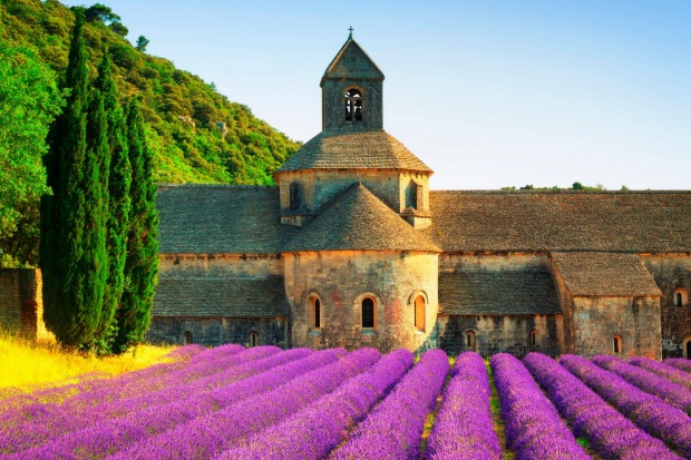 The Abbey of Senanque, Vaucluse, Provence, France.