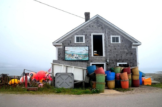 We picked a poor day to go whale-watching off remote Brier Island, Nova Scotia, in July. The fog thickened the closer we ...