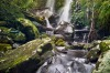 This photo was taken whilst hiking through Queensland's beautiful Lamington national park during the June/July holidays ...