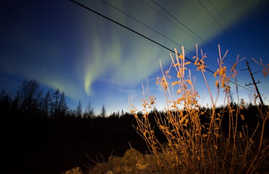 The Northern Lights, known as aurora borealis, are seen in Yellowknife, Northwest Territories, Canada.