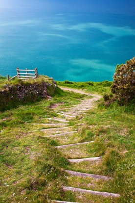 Wooden steps cut into a steep section of the South-West Coast Path near Lynton and Lynmouth, north Devon, England.