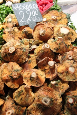 Mushrooms on a market stall at Mercat de Santa Caterina, Barcelona.