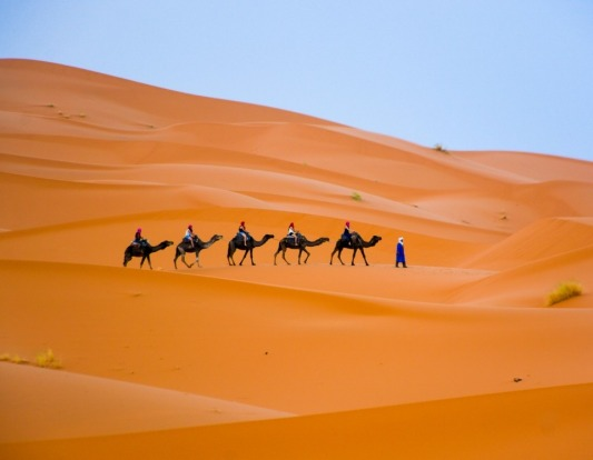 I visited the Sahara desert via the town of Merzouga in Morocco. The temperature was 45 degrees but I went for a long ...
