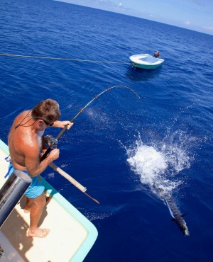 Reeling 'em in: Wahoo fishing.