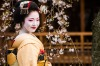 Tradition and modernity: A Geisha in Gion, Kyoto