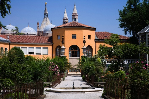 The Orto Botanico, Padua, Italy: Arguably the birthplace of modern science, the world's first botanical garden was set ...