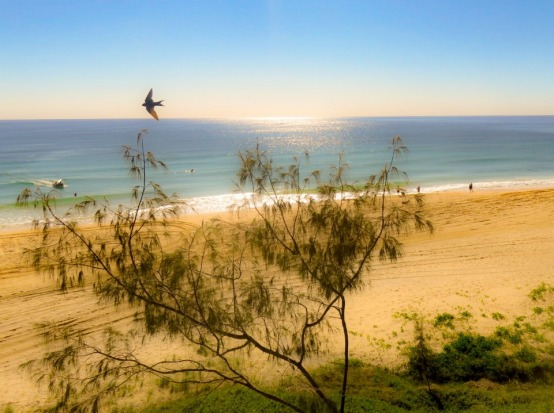 This was taken over the 2016 AFL Grand Final long weekend in Rainbow Beach, Queensland. I love this shot as it shows the ...