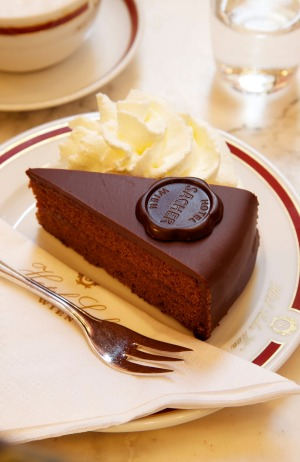 A slice of the famous Sacher Torte.