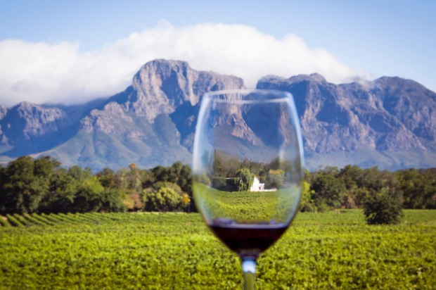 South africa wine tasting road trip slurpin 39 safari down for Jardin wine south africa
