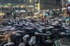 As one of the busiest intersections in the world, Shibuya crossing in Tokyo is a crazy place at the best of times. In ...