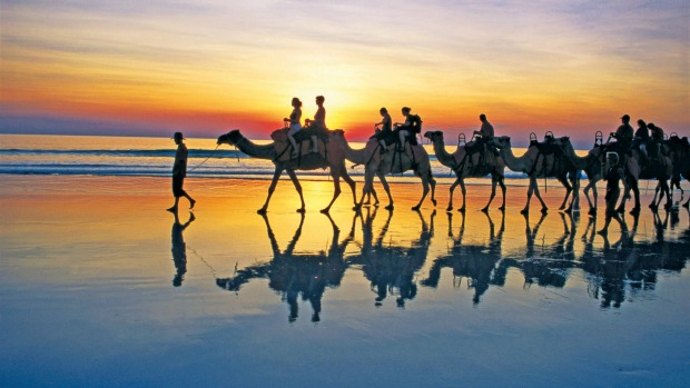 Cable Beach sunset camel ride.