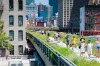 New York's High Line is a public park built on an historic freight rail line elevated above the streets on Manhattan's ...