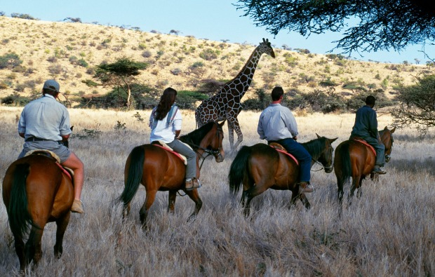 Guests view game from horseback at Wilderness Trails, Lewa Downs.