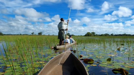 Visitors can glide almost silently through the waters of the Okavango Delta in Botswana in a boat made from a ...