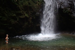We walk to spectacular waterfalls and then dive in to cool off.