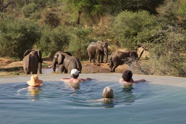 Pool above the locals' water hole at Sarara camp.