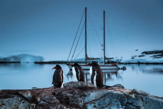 Each summer a handful of small yachts arrive in Antarctica and prepare to winter in over the following 6 months.