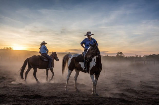 Dust filters the light at sunset and gives a backlit glow to riders and horses at Home Valley Station in the Kimberley, ...