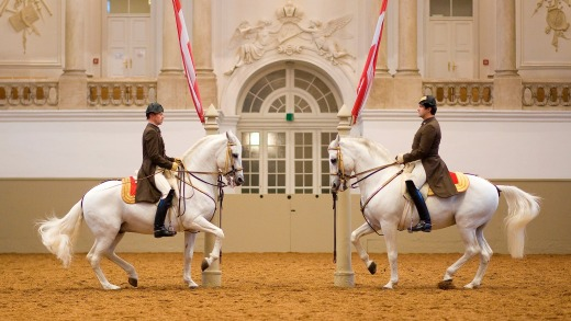 The Spanish Riding School.