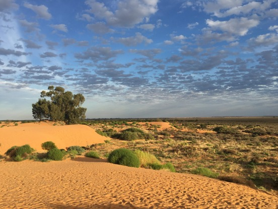 Perry Sandhills in New South Wales. Striking colours and symmetry make this picture mesmerising.
