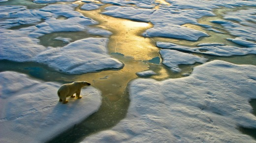 """A wake-up call that the earth is warming and it's warming substantially in the Arctic.'"