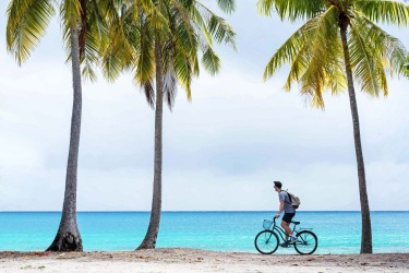 Secluded white sand beaches lined with picture-perfect palms are not hard to find on the Tahitian island of Rangiroa. We ...