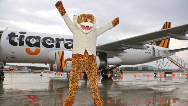 The impostor mascot who welcomed the first Tigerair flights from Melbourne to Canberra.