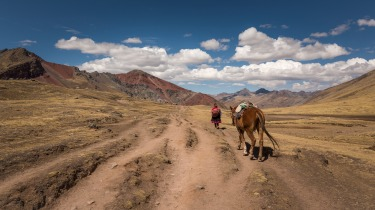 The horse women and men of the Vinicunca Mountain(Rainbow Mountain) communities in the Peruvian Andes. These men and ...