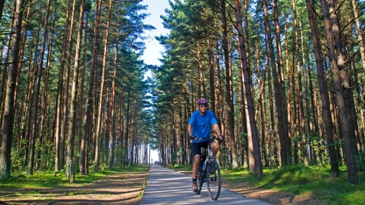 Cycling through pine forest on Lithuania's Seaside Cycle Route.