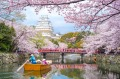 Himeji Castle with beautiful cherry blossom in spring season.