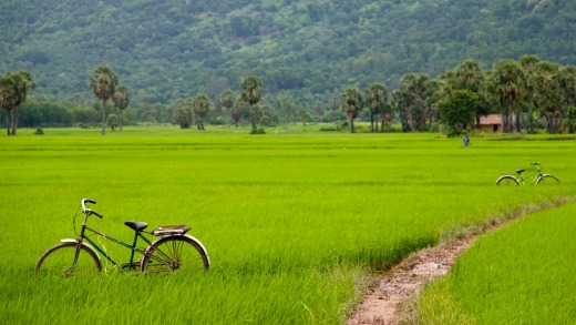 Cycling south-east Asia.