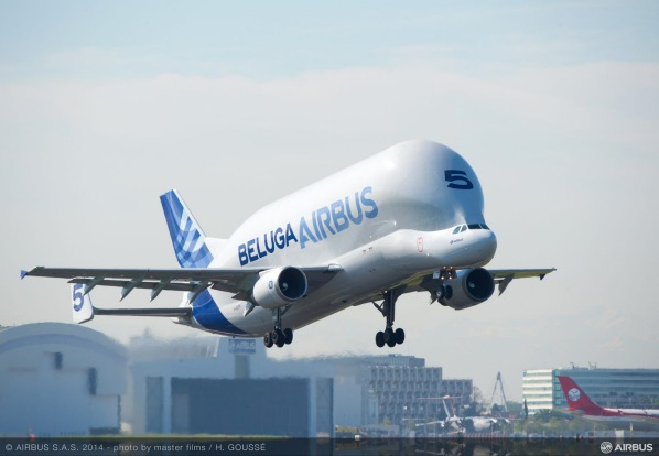 Airbus has five Belugas, which are used for transporting parts of other aircraft, such as fuselage sections, wings and ...