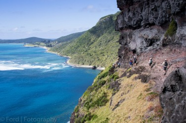 Mount Gower - Lord Howe IslandThis photo was taken on the descent from the top of the magnificent Mount Gower. The ...