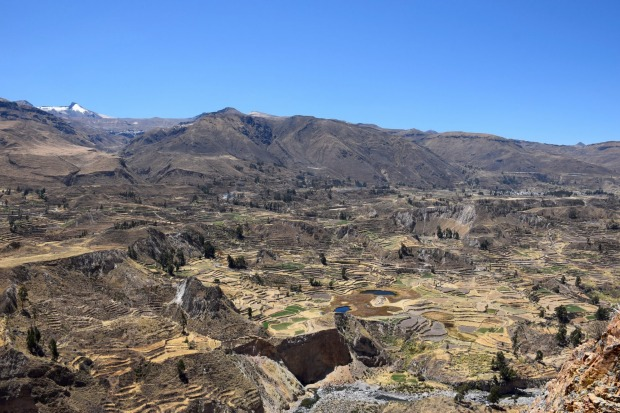The valley of Colca Canyon, Peru was home to the Cabana and Collagua people almost 2000 years ago. They built a system ...