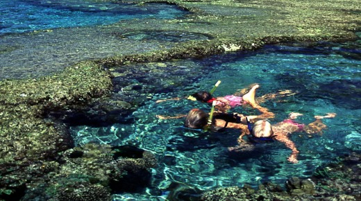 Snorkelling is easy at Lord Howe Island.