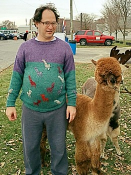 Sam Barsky does llamas.